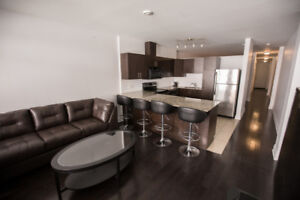 Condo Downtown 1950$/Mois