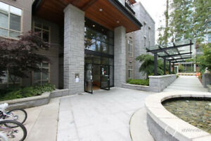 High-Quality Apartment near UBC for Rent