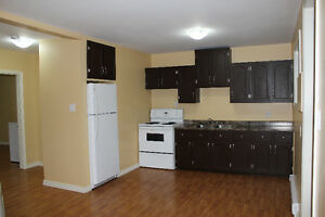 1 Bedroom Apartment - East End St. John's