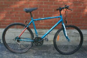 Two bikes for sale - Ride to school and fun!