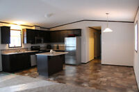 Brand New Modular Home for Sale in Hinton
