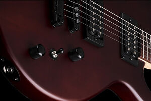 DEAN EVO XM Guitar - All Hardwoods, Pure Tones...A-1 Condition Kitchener / Waterloo Kitchener Area image 2