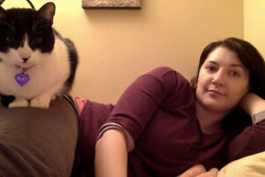 pet sitting and cat boarding