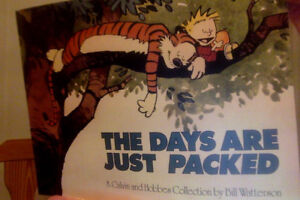 "Calvin and Hobbes Collection-'The days are just packed""-New book"