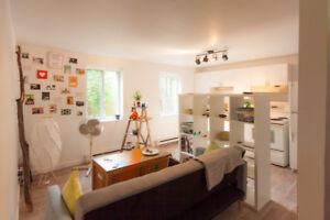 Loft 2 étages,lumineux,calme,pas de voisin,1 Ch., Métro Henri-B.