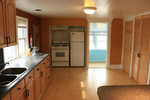 Beautiful Walkerville 2 bedrooms up apartment available April1st