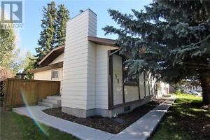 RESPONSIBLE Renter Needed this winter - fully renovated home