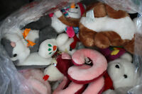 STUFFED ANIMALS for CHARITY