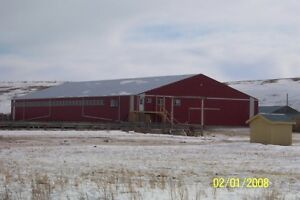 Factory Direct,Trusses,Floors,Buildings,Metal Cladding,