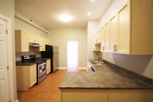 Newly renovated loft style apartment in downtown Pembroke