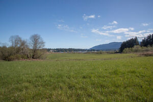 10.97 Acres if ALR Property Fronting Brannen Lake
