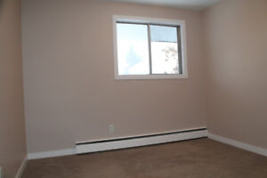 Renovated! Great Location near West Edmonton Mall Pet Friendly