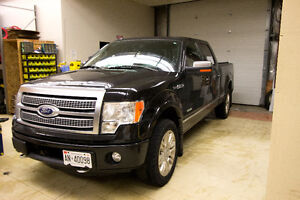 *NEED GONE* 2011 Ford F-150 Platinum Ecoboost