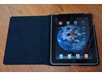 apple ipad mini wifi 16 gig gb