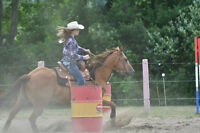 Horse Riding Lessons: