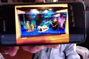 10 Gallon Fish Tank with everything you see and much more!!