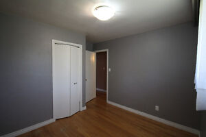 Room for rent in home near UW and Accelerator Centre Kitchener / Waterloo Kitchener Area image 7