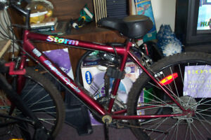 bicycle, supercyle, $60.00