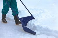We will shovel your snow for great price!!
