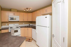 2 bed and bath condo with heated parking for rent Edmonton Edmonton Area image 4