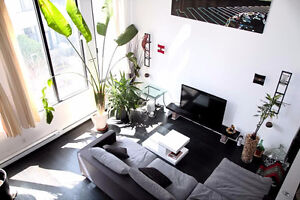 Beautiful furnished loft located in the Imperial Lofts