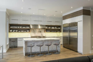 Quality Custom Kitchens At An Affordable Price & Quartz Counters
