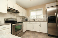 This *HUGE* Kitchen in a TOWNHOUSE!?! Fully Renovated! ONE PET?