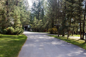 RV LOTS FOR SALE! Radium, BC. Gorgeous Property. Starting at $39