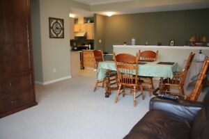 Beautiful fully furnished condo with lots of extras