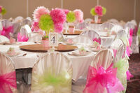Chair cover and ribbon rental