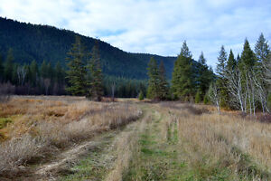 Great Building Lot on South Lakeside Williams Lake Cariboo Area image 4