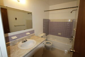 Large 1 Bed Apt North Victoria & Taylor Controled Entry Hardwood London Ontario image 5