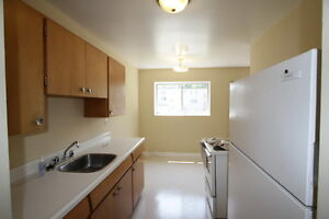 Large 1 Bed Apt North Victoria & Taylor Controled Entry Hardwood London Ontario image 4