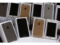 IPhone 6 Plus 16gb GOLD SILVER GREY all colour available
