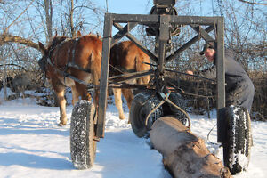 HORSE DRAWN - LOG ARCH -  FOR SALE Belleville Belleville Area image 2