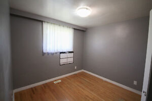 Room for rent in home near UW and Accelerator Centre Kitchener / Waterloo Kitchener Area image 8