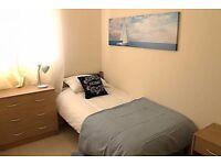 Cute and Cozy single room near CANARY WHARF
