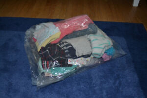 Baby girl clothing lot (12-18 months)