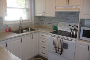 BEAUTIFULLY UPDATED HOME IN ELLIOT LAKE !!!!!