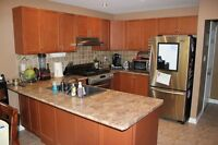 Kitchen cabinets, counters & sink