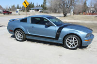 2007 Ford Mustang GT Auto Custom Paint SVT Wheels Low KMS
