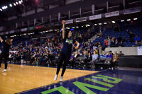 Niagara Lady Lions Promotional Team Auditions