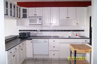 2 Bdrm 12 Fl. Downtown Condo In Oliver Great Location Avail. Now