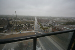 New Condo for Rent in Downtown Kitchener Kitchener / Waterloo Kitchener Area image 5