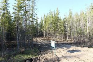 Open Lot at Turtle Lake Lodge, ready to plan your lake getaway!