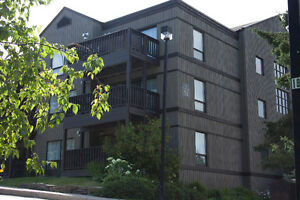 ALL INCLUSIVE FURNISHED CONDOS -4-12 Month Leases (Deerhurst)