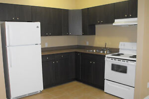 Beautifully Updated 1 Bedroom Apartment - $825/Month