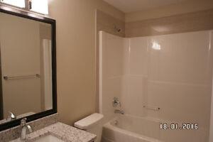 $51000 Reduced. New, Mortgage helper, Basement suite potential. Edmonton Edmonton Area image 4