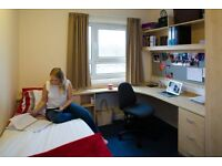 Superior En suite Room - Lancaster university