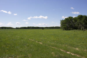 308 acres of  land in the RM of Prairie View (Birtle)